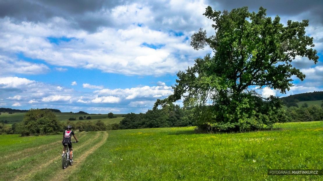 Chráněná krajinná oblast, rezervace Čertoryje